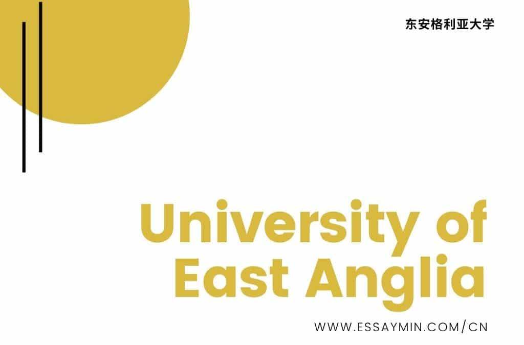 东安格利亚East Anglia论文代写, EssayMin教你正确面对论文写作难题.